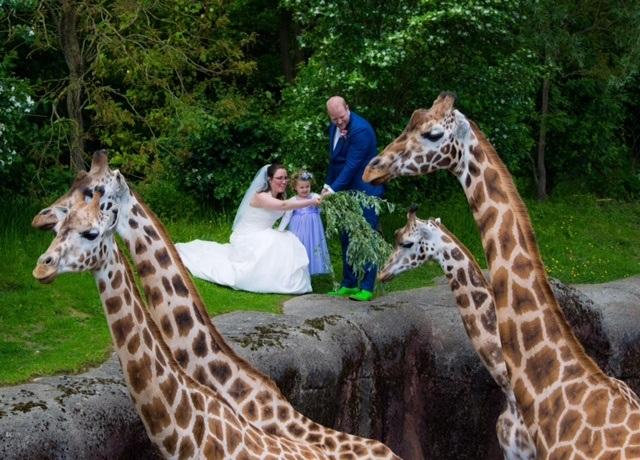 Trouwen in de dierentuin